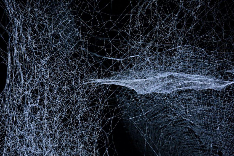 Von Künstlicher Intelligenz zu Künstlichem Leben